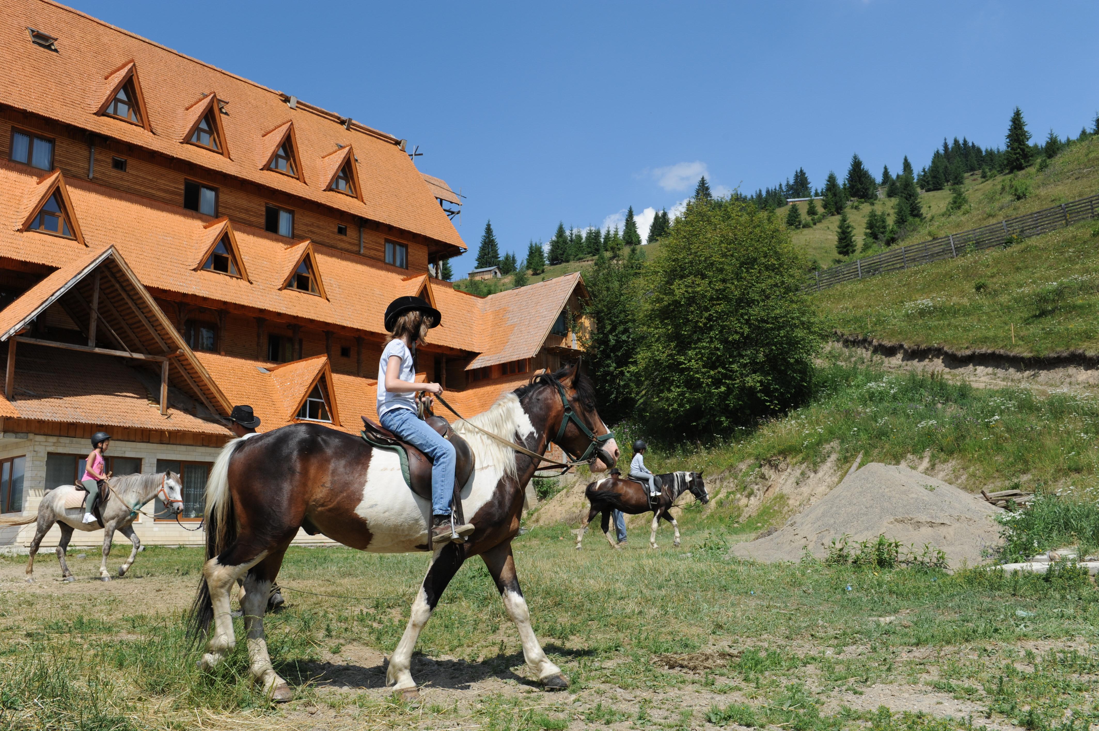 Tabara Dorna Arini 5-15 iulia 2012